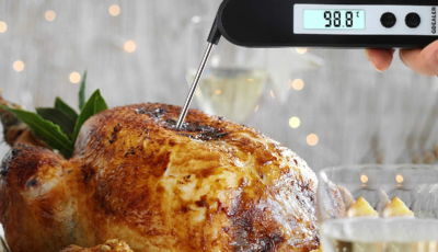 best digital meat thermometer